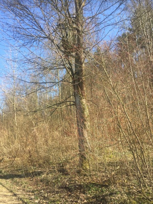 Aalener Panoramaweg Etappe 1