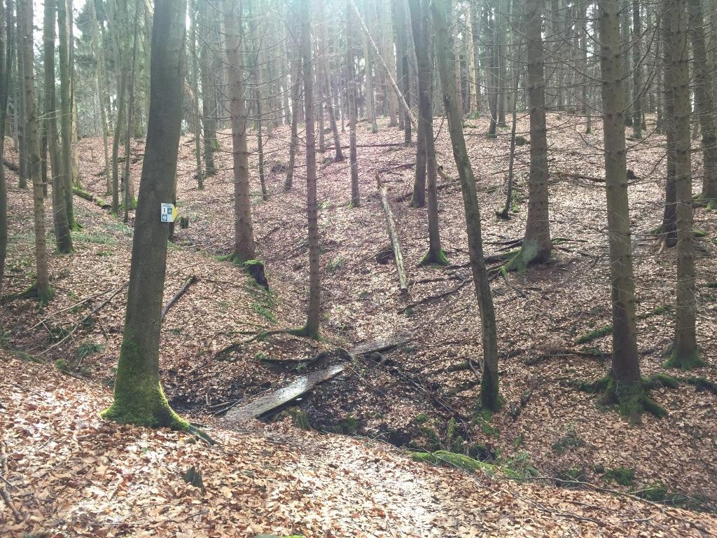 Oberroter Wanderweg 2 - Strecke