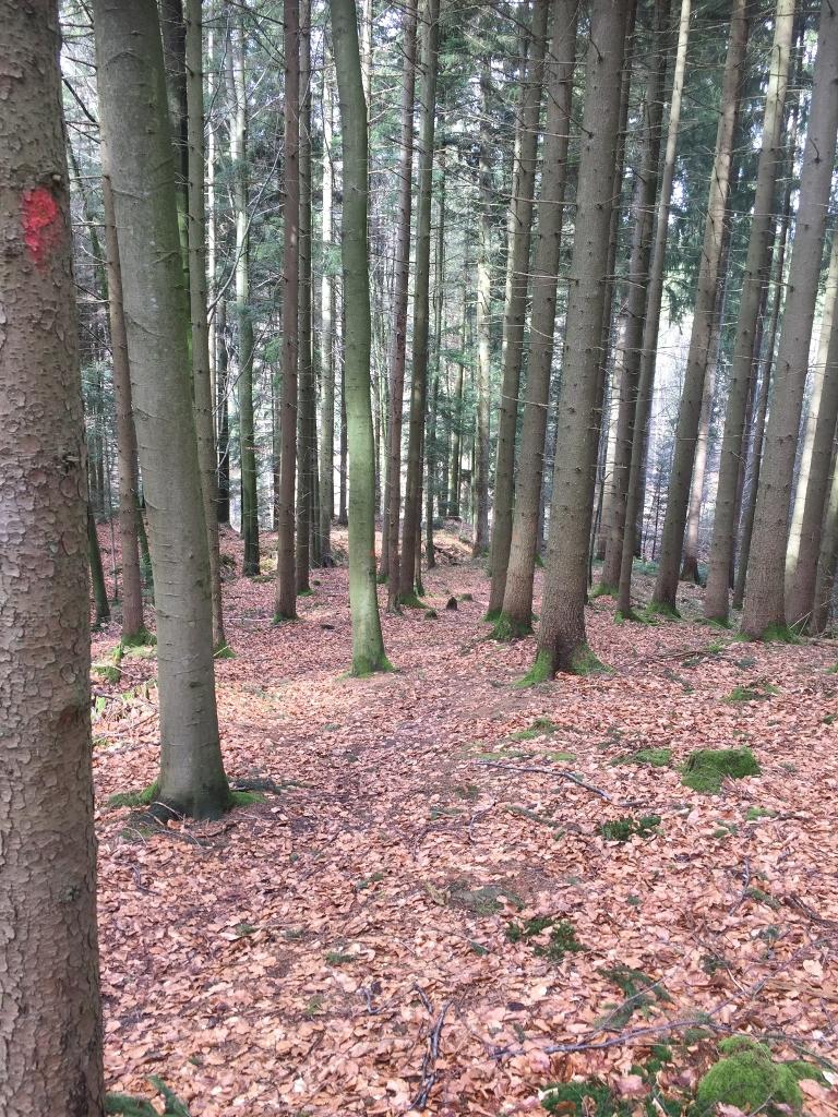 Oberroter Wanderweg 2 - schönster Abschnitt